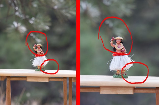 The photo to the left of the divider was made with the Nikon D610 and Nikkor 200-500mm f/5.6E at 300mm, f/5.6, ISO 400, 1/200-second. The photo on the right was made with the same lens at the same distance from subject also at 300mm, f/5.6, ISO 400, 1/200-second. (Bill Ferris)