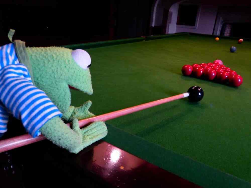 snooker player kids