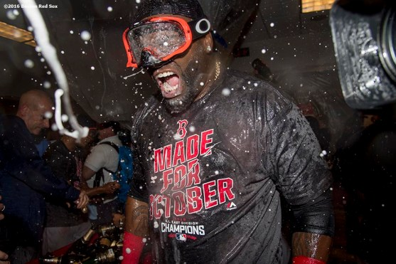 NEW YORK, NY - SEPTEMBER 28: David Ortiz #34 of the Boston Red Sox celebrates after clinching the American League East Division after a game against the New York Yankees on September 28, 2016 at Yankee Stadium in the Bronx borough of New York City. (Photo by Billie Weiss/Boston Red Sox/Getty Images) *** Local Caption *** David Ortiz