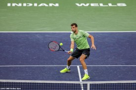 Grigor Dimitrov in action during a match against Jack Sock at the Indian Wells Tennis Garden in Indian Wells, California on Tuesday, March 14, 2017. (Photo by Billie Weiss/BNP Paribas Open)