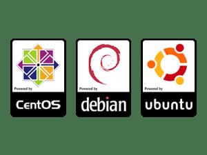 Linux Server OS Options