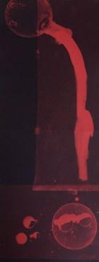 Bill Jones, red spill # 4, 2015, cyanotype, 8x20 inches