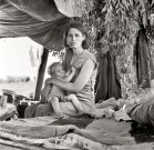 """Aug. 17, 1936. Blythe, Calif. """"Drought refugees from Oklahoma camping by the roadside. They hope to work in the cotton fields. There are seven in family."""""""