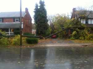 Hurricane Sandy Springfield Photo Essay 9:45 a.m. Oct. 30, 2012