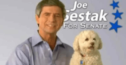 Havering Joe Sestak Pulls Vids