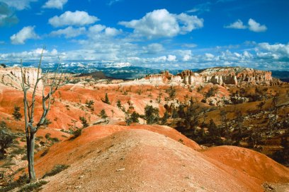 Bryce Canyon, Utah, North America