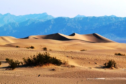 Mesquite Sand Dunes, Death Valley