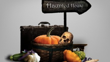 Haunted Pipes | Tampa Bay Plumbing