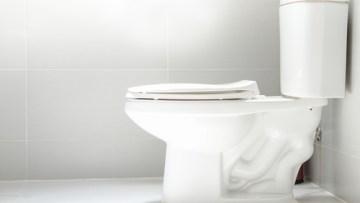 Toilet Clog | Billy the Sunshine Plumber