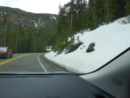 Yellowstone National Park - Snow/Ice