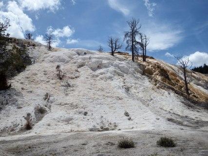 Yellowstone National Park - Mammoth Springs