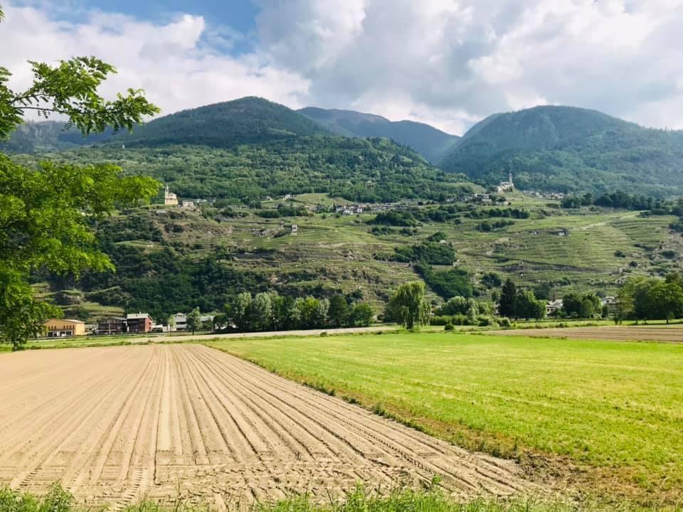 Media Valtellina