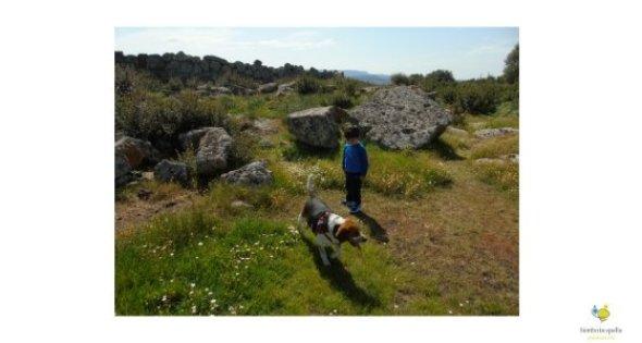 Monte Baranta Sardegna