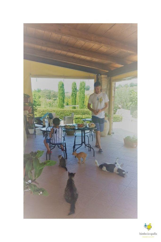 Agriturismo Fontefredda vacanze in Molise
