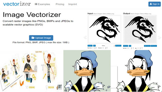 Top five software to vectorize images efficiently