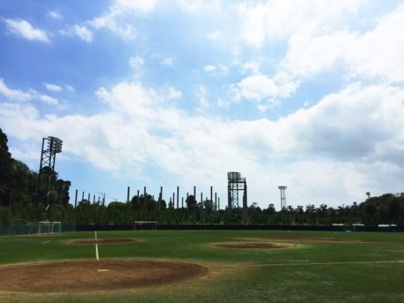 野球の硬式と軟式の8つの違い!球速やグローブ、守備、投げ方などで比較!