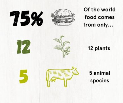 Schematic of the lack of biodiversity in what we eat