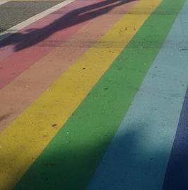 rainbow-raod-icon
