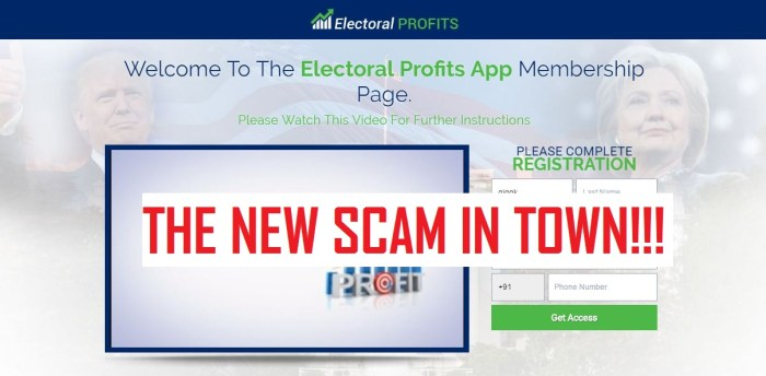 electoral profits scam