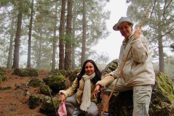 Coaching Santa Cruz de Tenerife