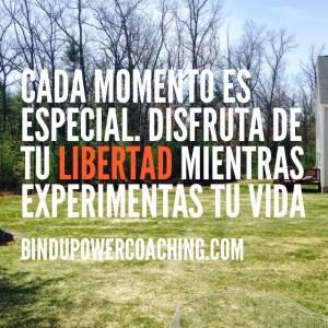 Power Freedom