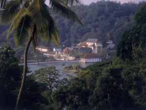 Sri Lanka's Kandy in a Day