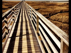 Bass Hole Boardwalk Gray's Beach, Yarmouth, Cape Cod