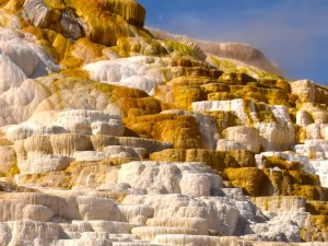Mammoth Hot Springs