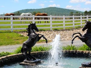 Kindred Pointe was originally a horse farm.