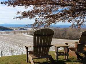 Bluestone Vineyard Hillside Seating