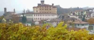 barolo castle photo