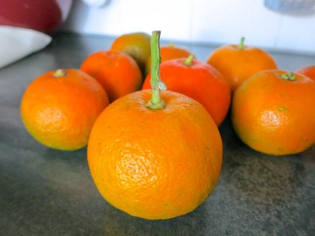 Orangenmarmelade – 07