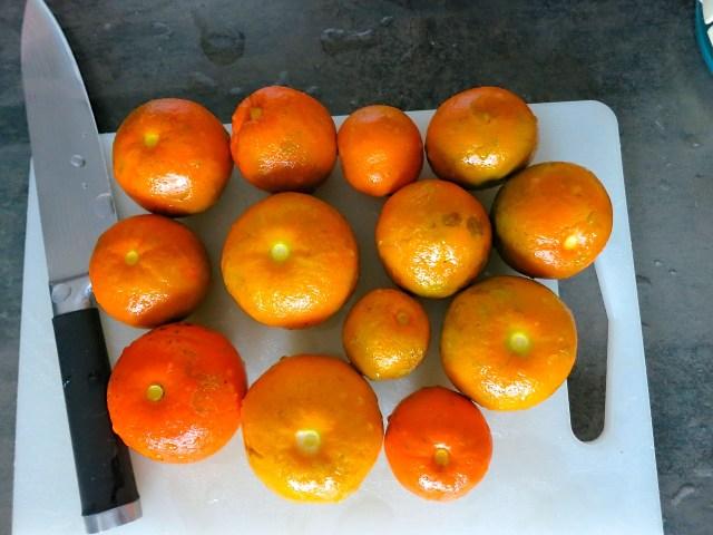 Orangenmarmelade – 10