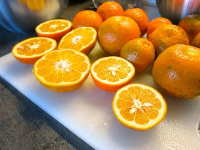 Orangenmarmelade – 16