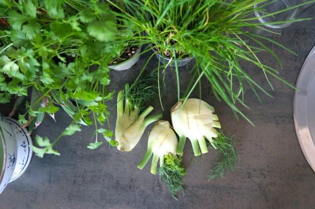 Hühnerbrust mit Fenchelsalat und Orangendressing – 02