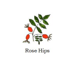 herb rose hips