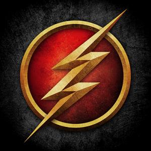 logo the flash