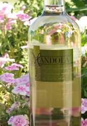 Mandola Vermentino is noted as one of Russ Kane's top 10 picks for 2009