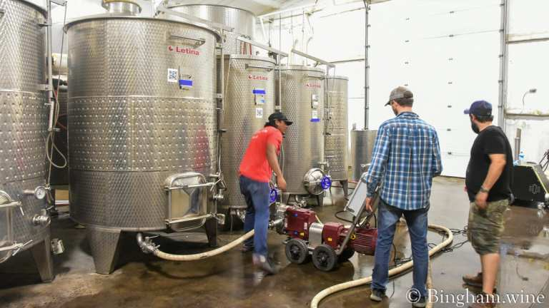 Bingham Family Vineyards winery crew tasting and working with our wines in the cellar.