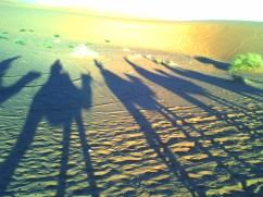 Dromedarritt in der Wüste