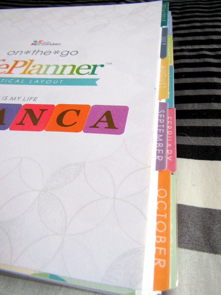 IMG 0455 - Binx Thinx About: The Erin Condren Life Planner