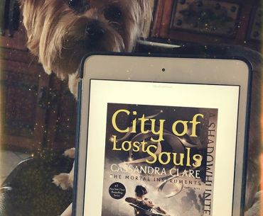 25025851 409537819482641 2629169186638659584 n - Binx Thinx About: City of Lost Souls