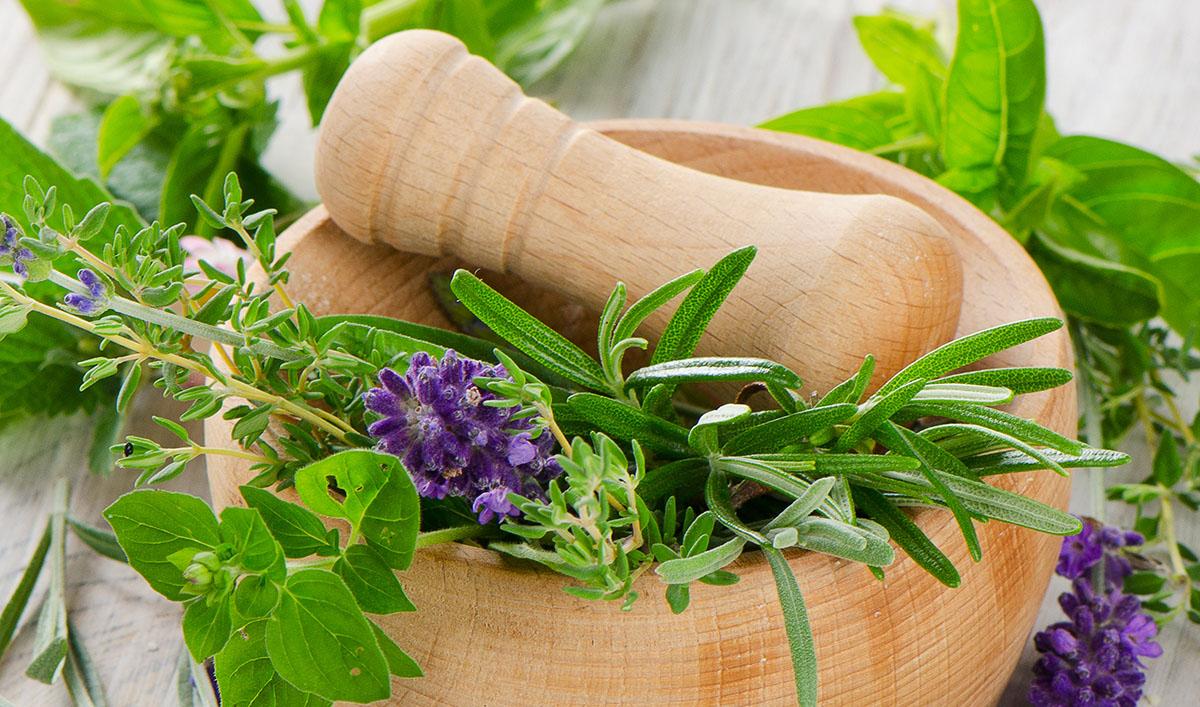 ingredientes-naturales-hierbas-shutterstock_149279732