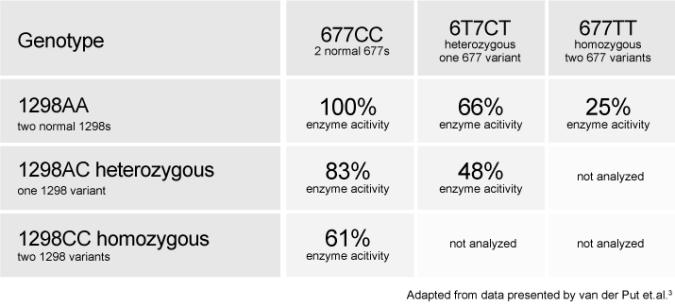 Tabel cu capacitatea functionala a enzimei MTHFR in functie de combinatiile de mutatii C667T si A1298C.
