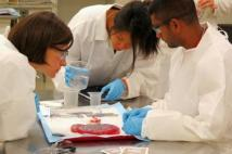 Annual Human Placental Workshop