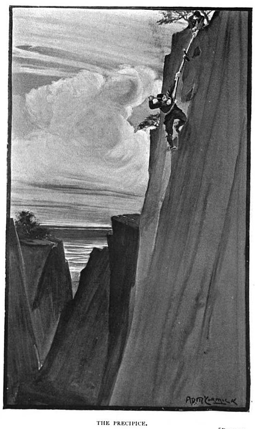 from Arthur Gordon Pym of Nantucket: A Romance by Edgar Allan Poe; illustration by A. D.  McCormick