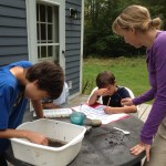 The Land Organism: Teacher Training in Aldo Leopold's Land Ethic
