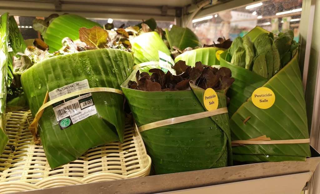 banana leaf packaging | cardboard packaging |  packaging supplies |  packaging types |  packaging companies |  biodegradable packaging