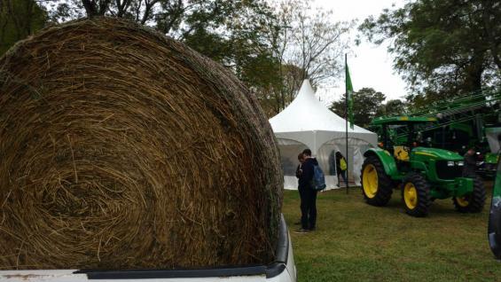 rollo-alfalfa-camioneta