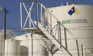 biodiesel argentina